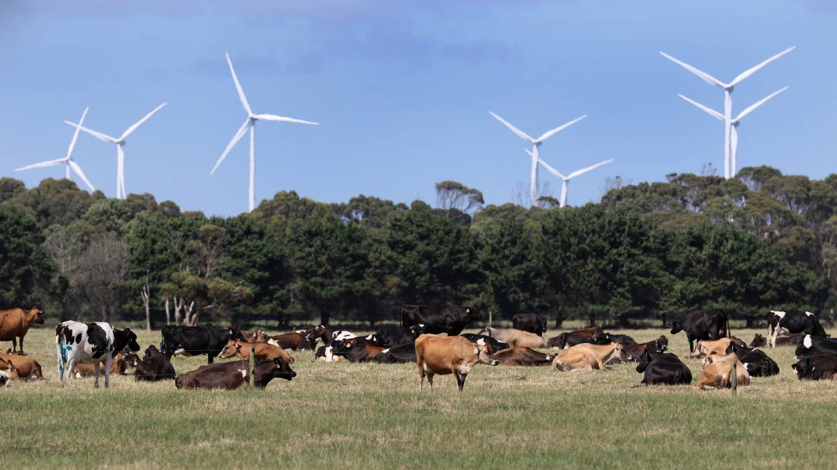 Existing wind farms at Woolnorth. Picture: File