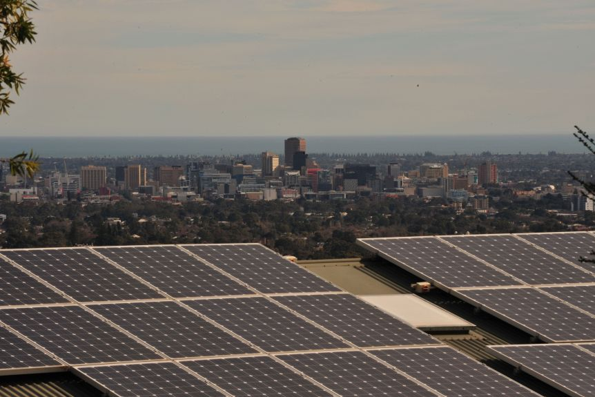Solar panels on a roof overlooking Adelaide.