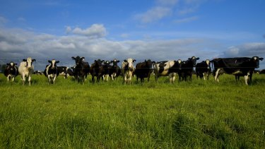 Australia's national farm representative group has endorsed a policy for an Australia-wide goal for net zero greenhouse gas emissions by 2030.