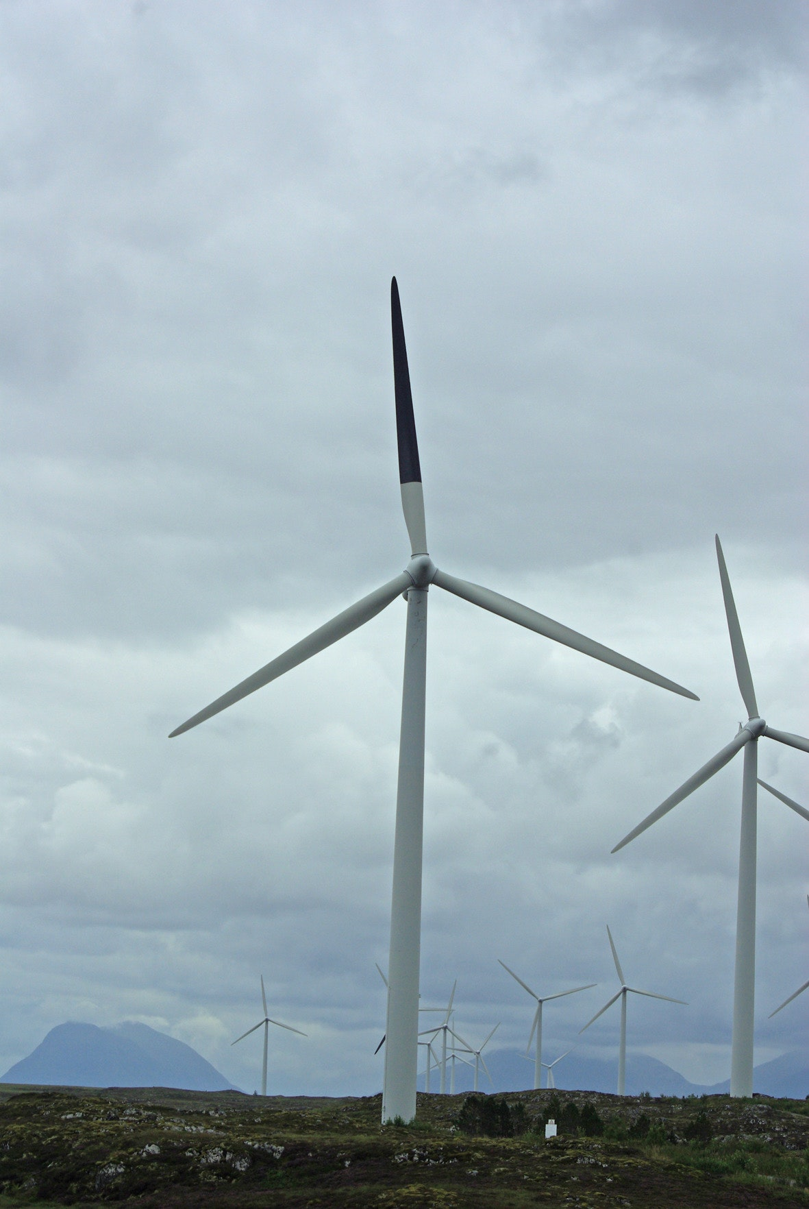 A wind turbine with one blade painted black, with several unpainted turbines in the background.
